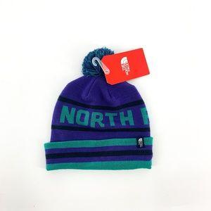 nwt | The North Face Purple & Green Striped Beanie